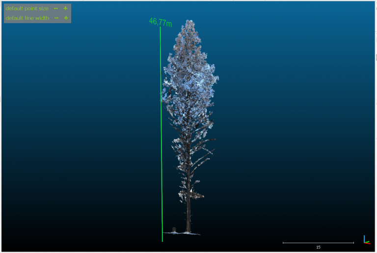 CIVIT demo: 3D model of Finland's tallest tree