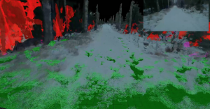 FinnForest: A Forest Landscape for Visual SLAM